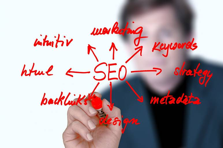 SEO professional audit